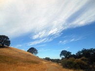 Hiking On Mount Diablo
