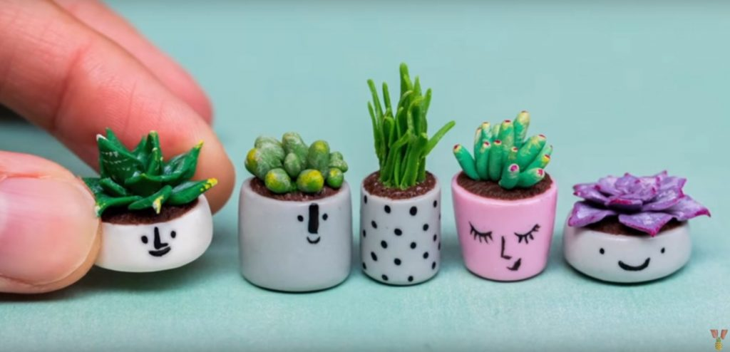 Miniature Succulents in Smiling Planters