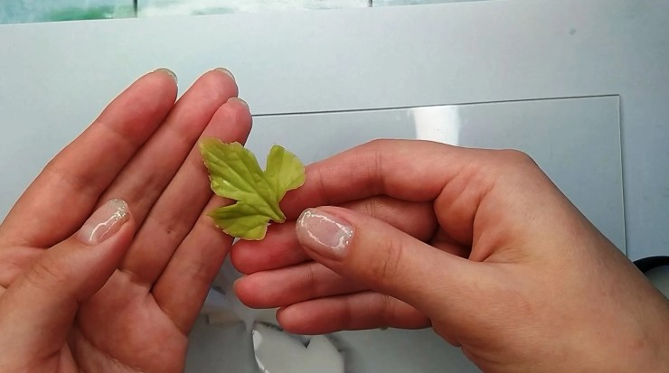 11 Anemone leaf or white and red currant leaf made from polymer clay