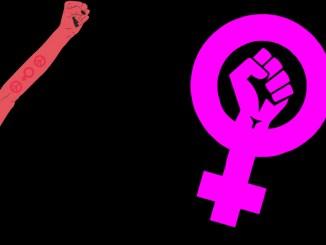 Polytox Podcast Folge 46 Feminismus