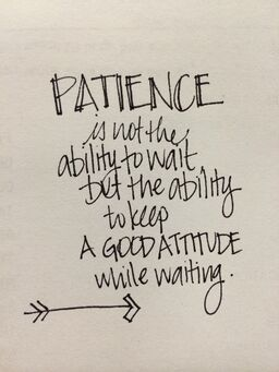 Patience Is Not A Virtue : patience, virtue, Patience, Certainly, Virtue!