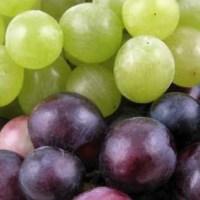 Vand struguri de vin