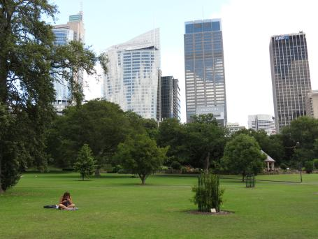 The domain is surrounded by the hi-rise buildings of Sydney
