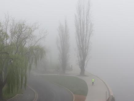 Misty morning Lake Burley Griffen