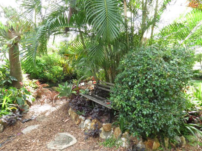 Garden March 2015 051_4000x3000