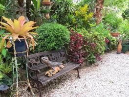 Garden March 2015 077_4000x3000