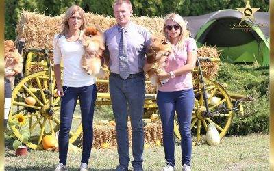 Specialty dog show V group & NDS Kac 10.09.2017