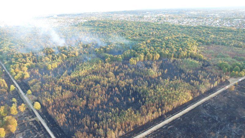 ?? Sénart (91) : 60 hectares de forêt ravagés par le feu