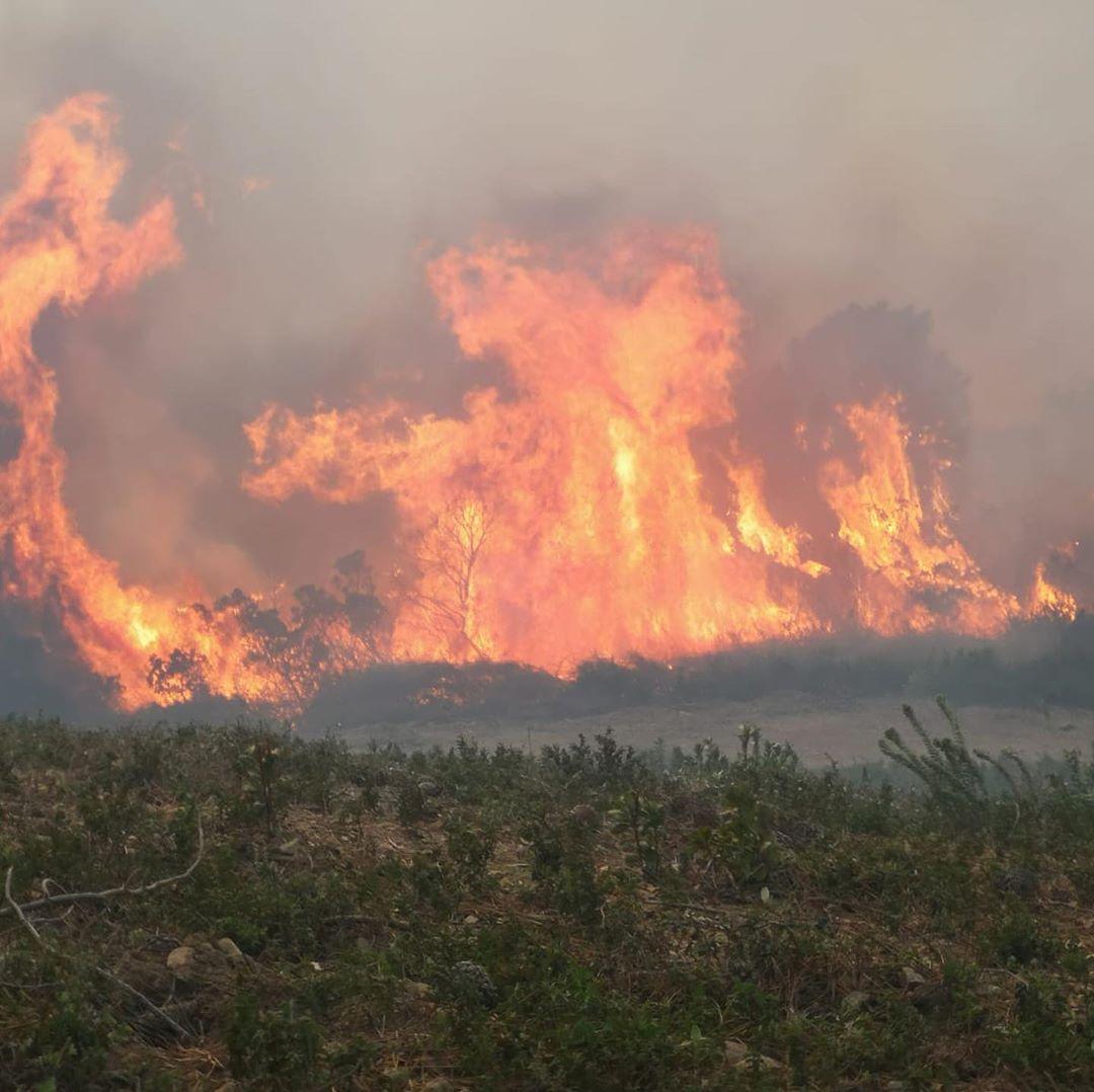 🇫🇷 Quenza (2A) : Un combat sans fin face aux feux de forêts en plein hiver