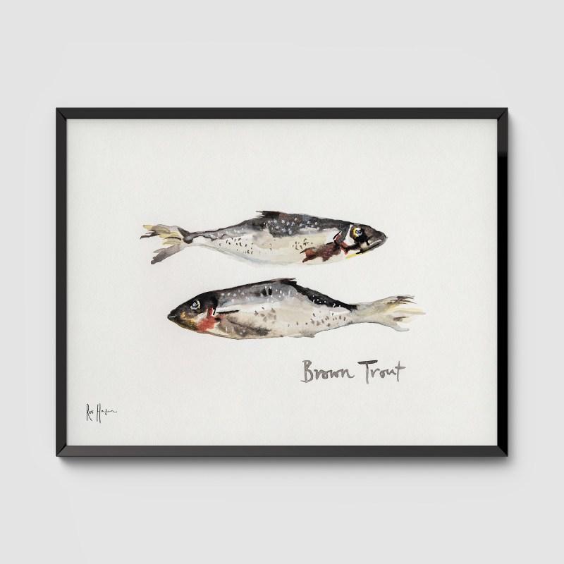 Brown Trout Framed Art Print