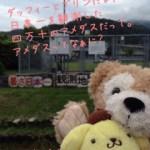 日記☆初めての高知県