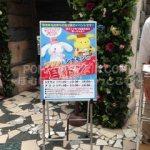 ポムポムプリン☆ポムポムプリンの耳ドン!7/4(土)開催