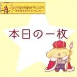 ポムポムプリン☆本日の一枚6/24