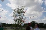 Balloon Release over his tree