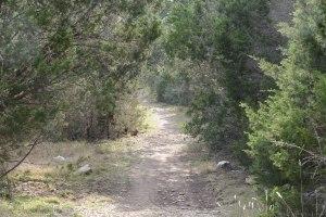 Circle C trail