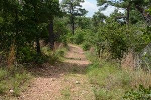 Pine Ridge at McKinney Roughs