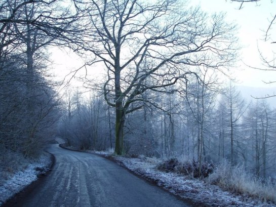 988240__frosty-winter-lane_p