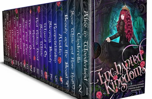 Enchanted Kingdoms Fairytales box set with picture of a girl in a black ball gown and the 22 novels included in the box set.