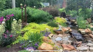 Watergarden and Landscape Design Company servicing CT