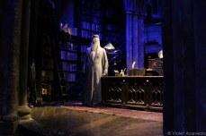 Dumbledore's costume standing in his office. © Violet Acevedo.