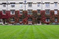 Exeter College courtyard. © Violet Acevedo