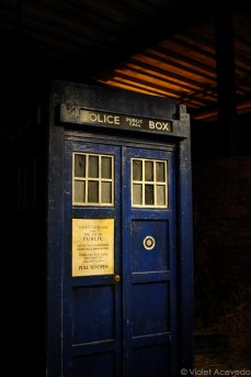 The first TARDIS. © Violet Acevedo