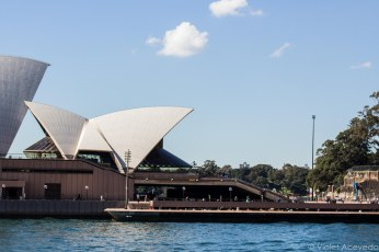 The Sydney Opera House from the Manly ferry. © Violet Acevedo