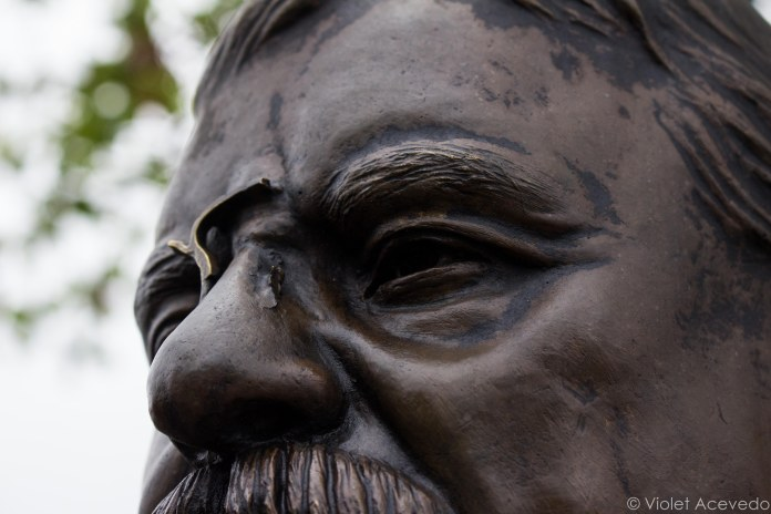 The eyes of Teddy Roosevelt survey the territory he fought to create. © Violet Acevedo