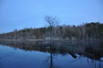 Alabama, outdoors, nature