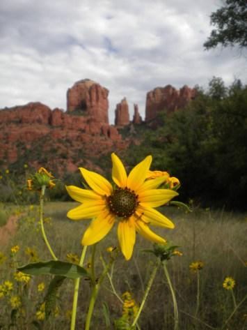 Cathedral Rock, Red Rock Crossing, Sedona, Arizona, hikes