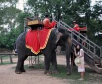 Cambodia, Elephant