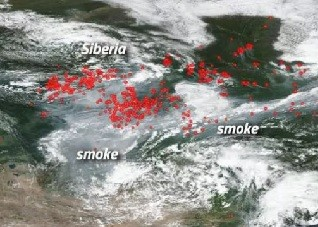 wildfire arctic north