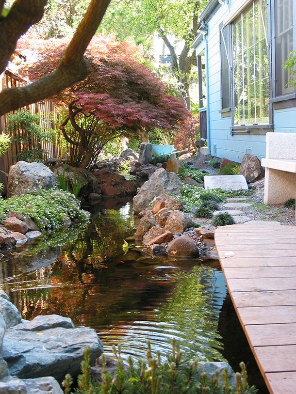 Santa Cruz Pond With Stream and Wetland System  Pond