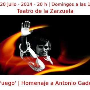 06 - 20 julio - 2014 - 20:00 h - Domingos 18:00 h | Teatro de la Zarzuela | 'Fuego' - Homenaje a Antonio Gades | Veranos de la Villa 2014 | Madrid