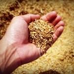 Pagos no sujetos a retención.- Retención por adquisición de productos agrícolas.