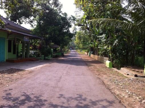Desa Ponjong Lomba Desa Propinsi 2011-0008