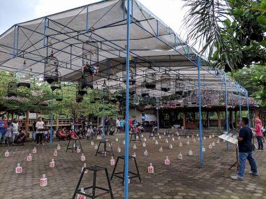 Hasil Latihan Bersama 245 Kontes Burung Berkicau Ponjong Enterprises 3 Maret 2018 (02)