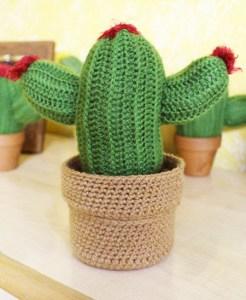 Caja cactus de ganchillo