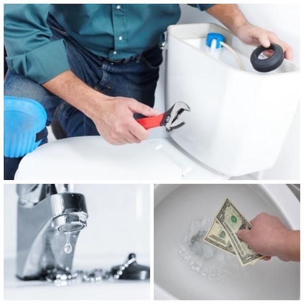 toilet leaks