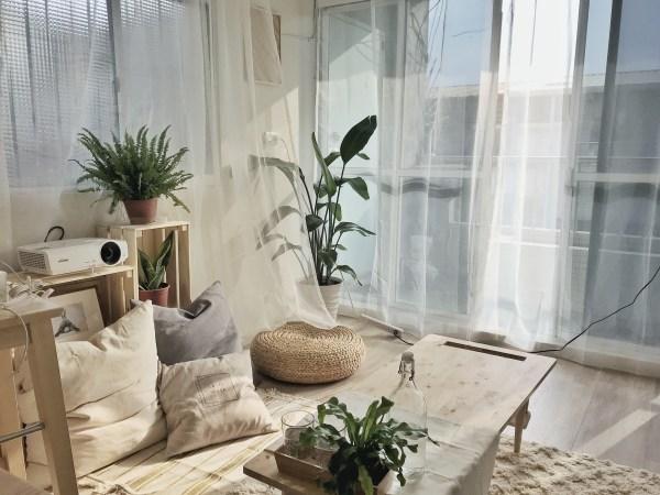 Lo-Fi House Miss little sunshine 日光清新小居