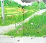 道ばたの四季という絵本を読んでみた!