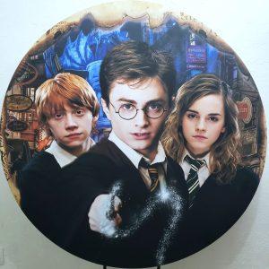 Tecido Sublimado Harry Potter