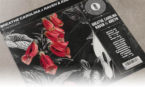 Breathe Carolina x Raven & Kreyn