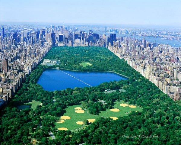 Central Park Nyc Pic