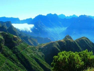 A ilha da Madeira tem um relevo bastante escarpado. Os vinhedos são plantados em terraços, de difícil manutenção
