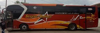 bus sugeng rahayu by golden express nampak kanan