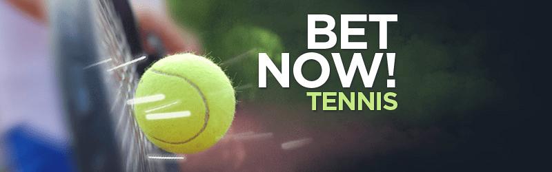 Biletul Zilei - Ponturi Tenis (03.02.2015) - multe meciuri interesante astazi, la cote interesante