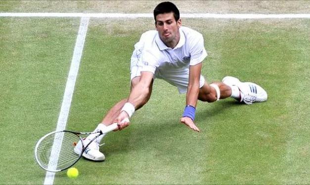 Ponturi Tenis Djokovic – Pospisil – Eastbourne (GBR)