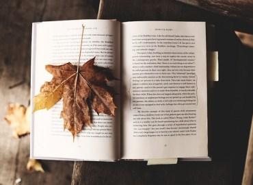 recomendaciones de libros