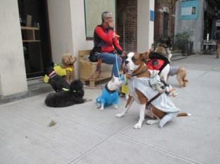 Halloween Dog Walker